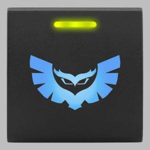 STEDI Square Type Push Switch STEDI Owl